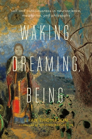 Waking,  Dreaming,  Being Self and Consciousness in Neuroscience,  Meditation,  and Philosophy