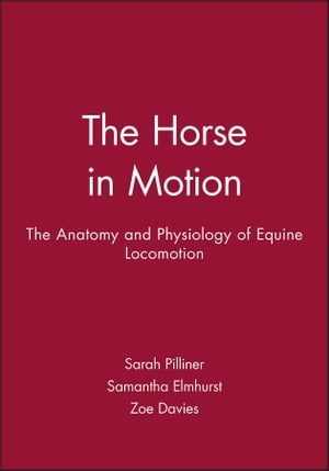 The Horse in Motion The Anatomy and Physiology of Equine Locomotion