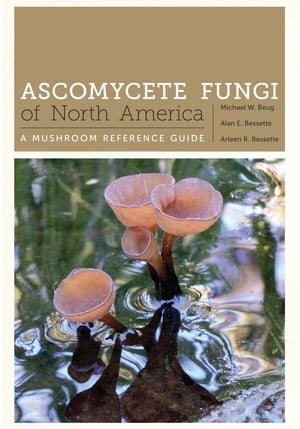 Ascomycete Fungi of North America