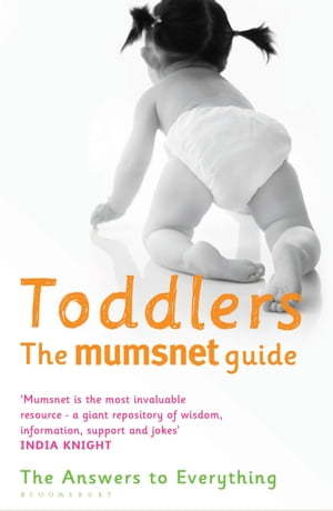 Toddlers: The Mumsnet Guide The Answers to Everything