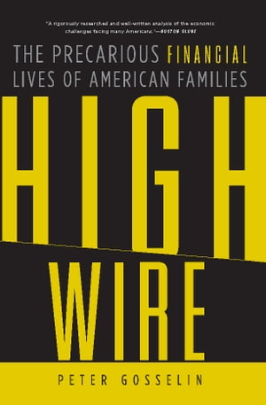 High Wire The Precarious Financial Lives of American Families