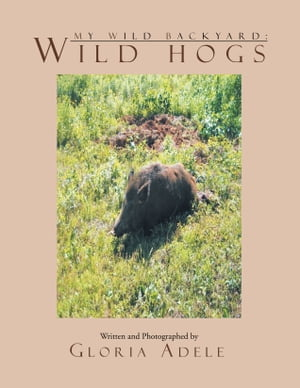 My Wild Backyard: Wild Hogs