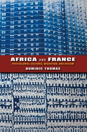 Africa and France Postcolonial Cultures,  Migration,  and Racism