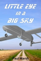 Little Eye in a Big Sky Cover Image