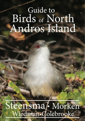 A Guide to the Birds of North Andros Island