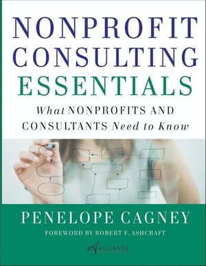Nonprofit Consulting Essentials What Nonprofits and Consultants Need to Know