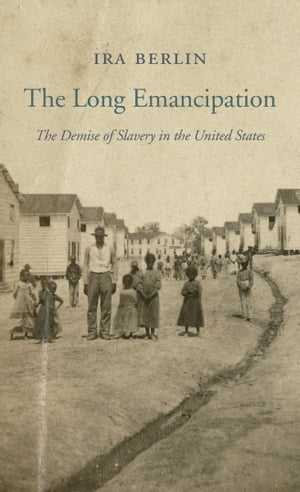 The Long Emancipation The Demise of Slavery in the United States