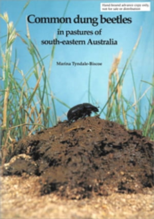 Common Dung Beetles in Pastures of South-eastern Australia