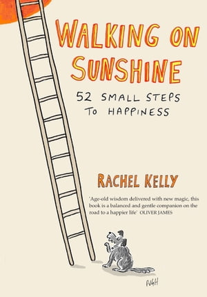 Walking on Sunshine 52 small steps to happiness