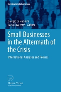 Small Businesses in the Aftermath of the Crisis