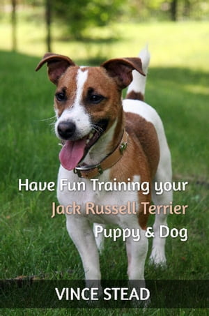 Have Fun Training your Jack Russell Terrier Puppy & Dog