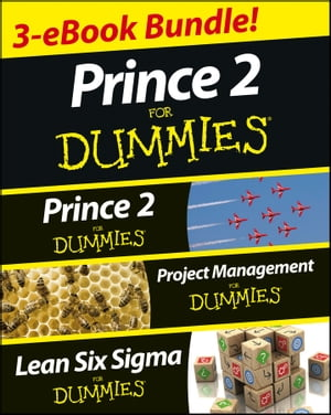 Project Management For Dummies at Easons