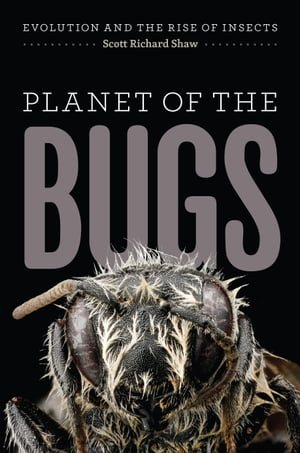 Planet of the Bugs Evolution and the Rise of Insects