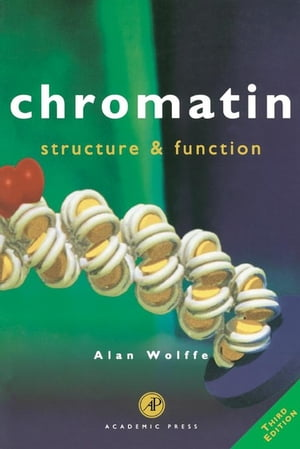 Chromatin Structure & Function