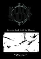 The Book of the Black Sun: Widdtr Cover Image
