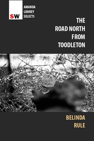 The Road North From Toodleton