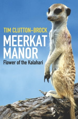 Meerkat Manor Flower Of The Kalahari