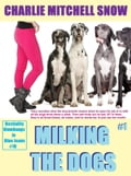 online magazine -  Milking the Dogs, Part 1