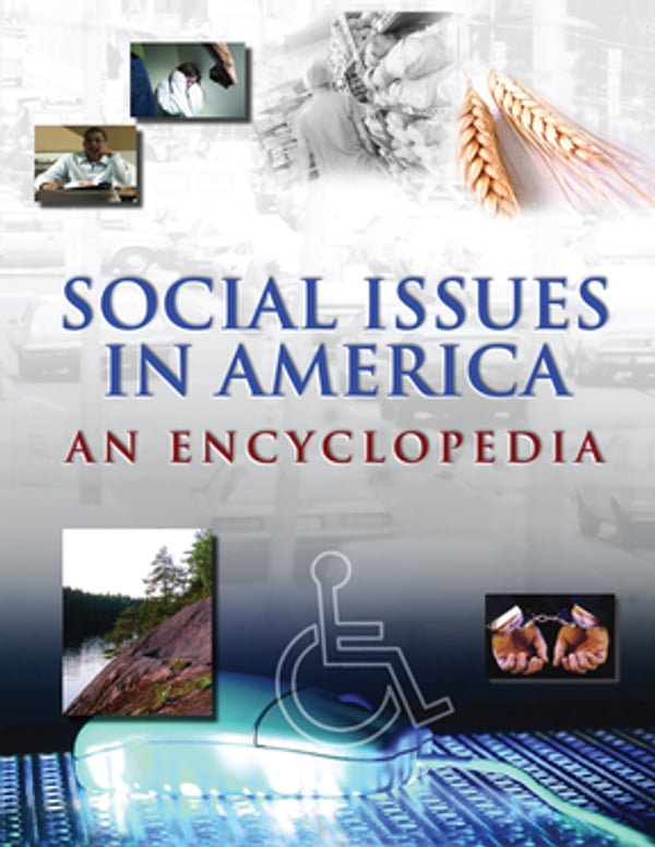 issues in america essay