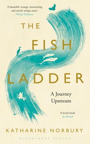 The Fish Ladder A Journey Upstream