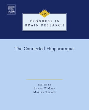 The Connected Hippocampus