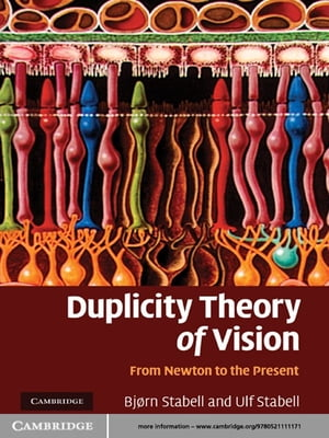Duplicity Theory of Vision From Newton to the Present