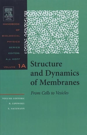 Structure and Dynamics of Membranes I. From Cells to Vesicles / II. Generic and Specific Interactions