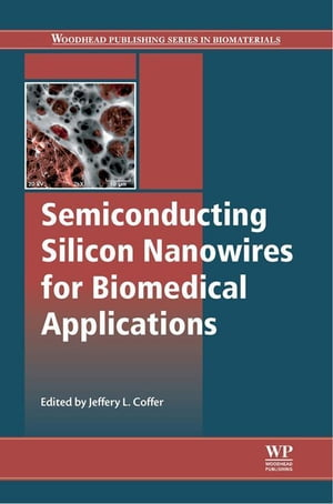 Semiconducting Silicon Nanowires for Biomedical Applications