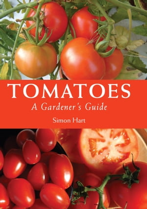 Tomatoes A Gardener's Guide