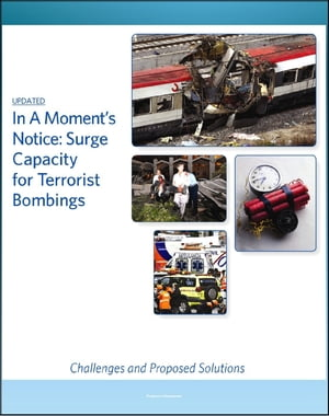 In A Moment's Notice: Surge Capacity for Terrorist Bombings - Challenges and Proposed Solutions,  Lessons from Madrid and London Bombings