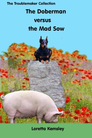 Hans and the Mad Sow