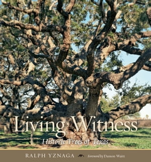Living Witness Historic Trees of Texas