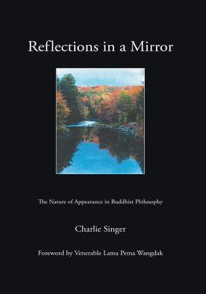 Reflections in a Mirror The Nature of Appearance in Buddhist Philosophy