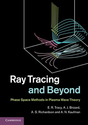 Ray Tracing and Beyond Phase Space Methods in Plasma Wave Theory