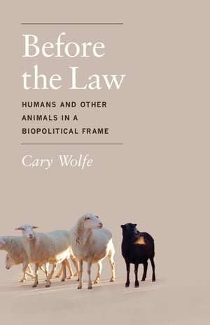 Before the Law Humans and Other Animals in a Biopolitical Frame