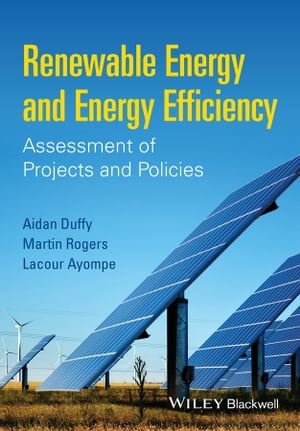Renewable Energy and Energy Efficiency Assessment of Projects and Policies
