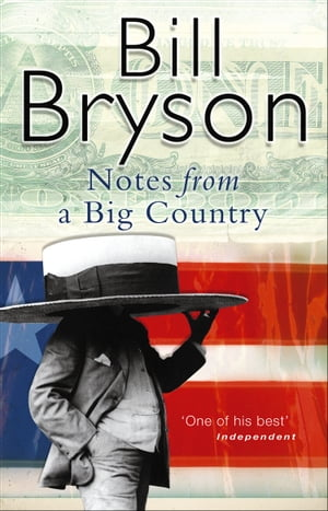 Notes From A Big Country Journey Into the American Dream