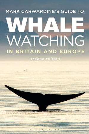 Mark Carwardine's Guide To Whale Watching In Britain And Europe Second Edition