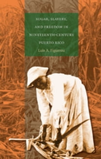 Sugar, Slavery, and Freedom in Nineteenth-Century Puerto Rico