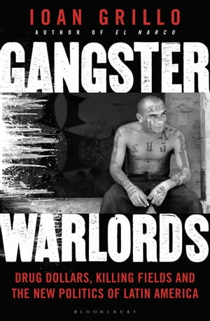 Gangster Warlords Drug Dollars,  Killing Fields,  and the New Politics of Latin America