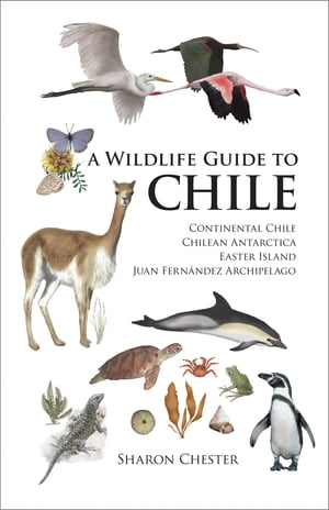A Wildlife Guide to Chile Continental Chile,  Chilean Antarctica,  Easter Island,  Juan Fernandez Archipelago