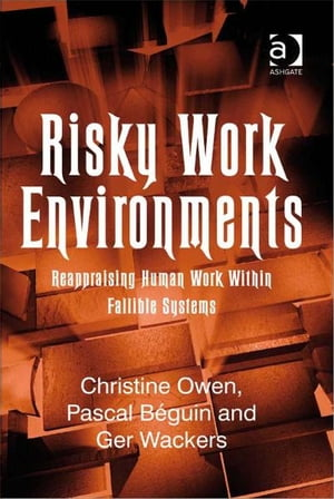 Risky Work Environments Reappraising Human Work Within Fallible Systems