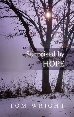 Surprised by Hope Original,  provocative and practical
