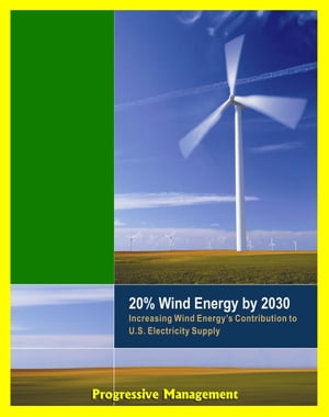 20% Wind Energy by 2030: Increasing Wind Energy's Contribution to U.S. Electricity Supply,  Wind Manufacturing Workshop,  U.S. Department of Energy Repo
