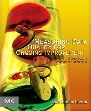 Measuring Data Quality for Ongoing Improvement A Data Quality Assessment Framework