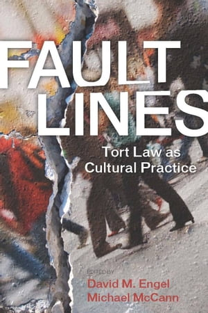 Fault Lines Tort Law as Cultural Practice