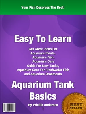 Easy To Learn Aquarium Tank Basics