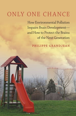Only One Chance How Environmental Pollution Impairs Brain Development -- and How to Protect the Brains of the Next Generation