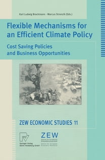Flexible Mechanisms for an Efficient Climate Policy