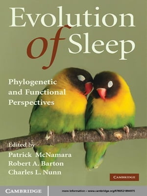 Evolution of Sleep Phylogenetic and Functional Perspectives
